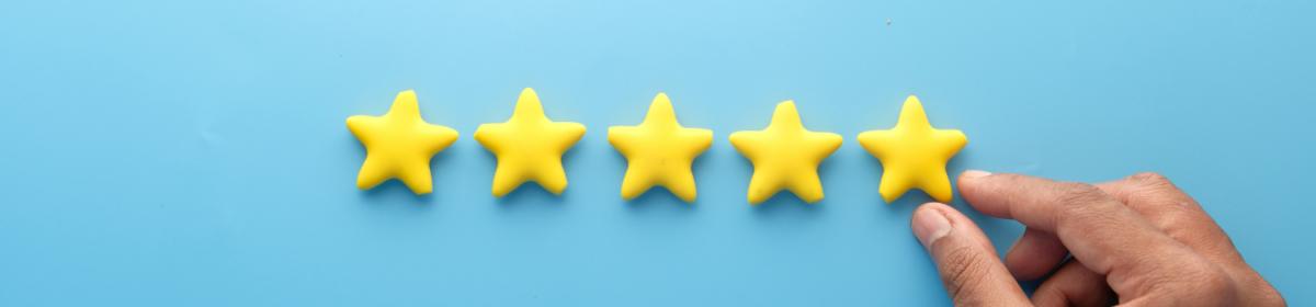 review vincent schiphorst